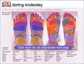 Interactive Reflexology Foot Chart